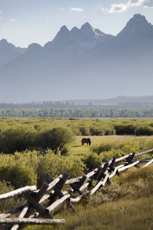 Conserve Jackson Hole Ranch Lands